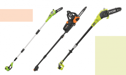 Top 9 Best Cordless Pole Saw To Meet Our Trimming Requirements