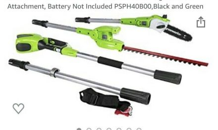 Greenworks PSPH40B210 8 Inch 40V Cordless Pole Saw with Hedge Trimmer Attachment