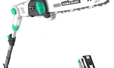 Litheli 40V Cordless Pole Saw 10 inches with 2.5AH Battery & Charger
