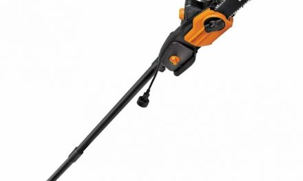 WORX WG309 8.0 Amp Electric Pole Saw, 10-Inch- Chainsaw and Pole Saw All in One