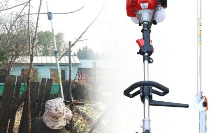 """2Stroke 42.7cc Gas Pole Saw Pruner Chainsaw 12"""" Blade Outdoor Tree Trimmer Tool"""